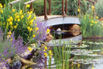 How to Build a Backyard Pond: Water Garden Landscaping Ideas