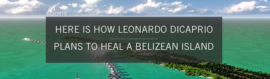 Here is How Leonardo DiCaprio Plans to Heal the Belizean Island He Owns