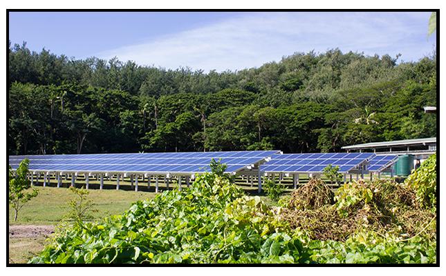 Solar in Garden